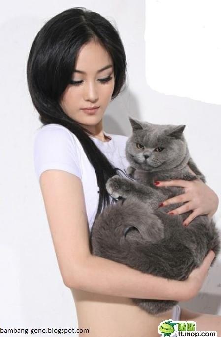 Kucing Foto Sama Model