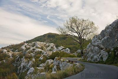Cetinje road