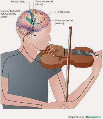 fakta mengejutkan tentang musik