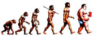 The Basic Principles Of The Theory Of Evolution