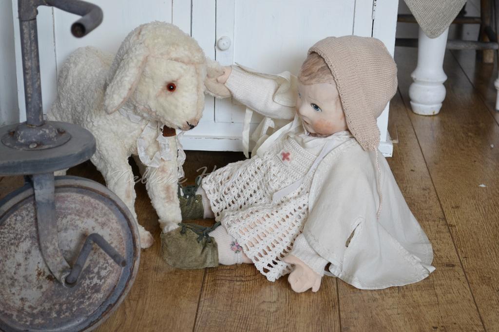 Met schaap