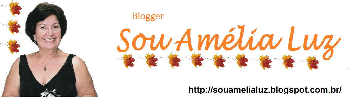 Blogger da Amelia Luz