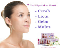 GLUTA BERRY COLLAGEN