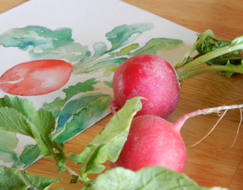 Grow Creative:  Watercolor Radish Painting