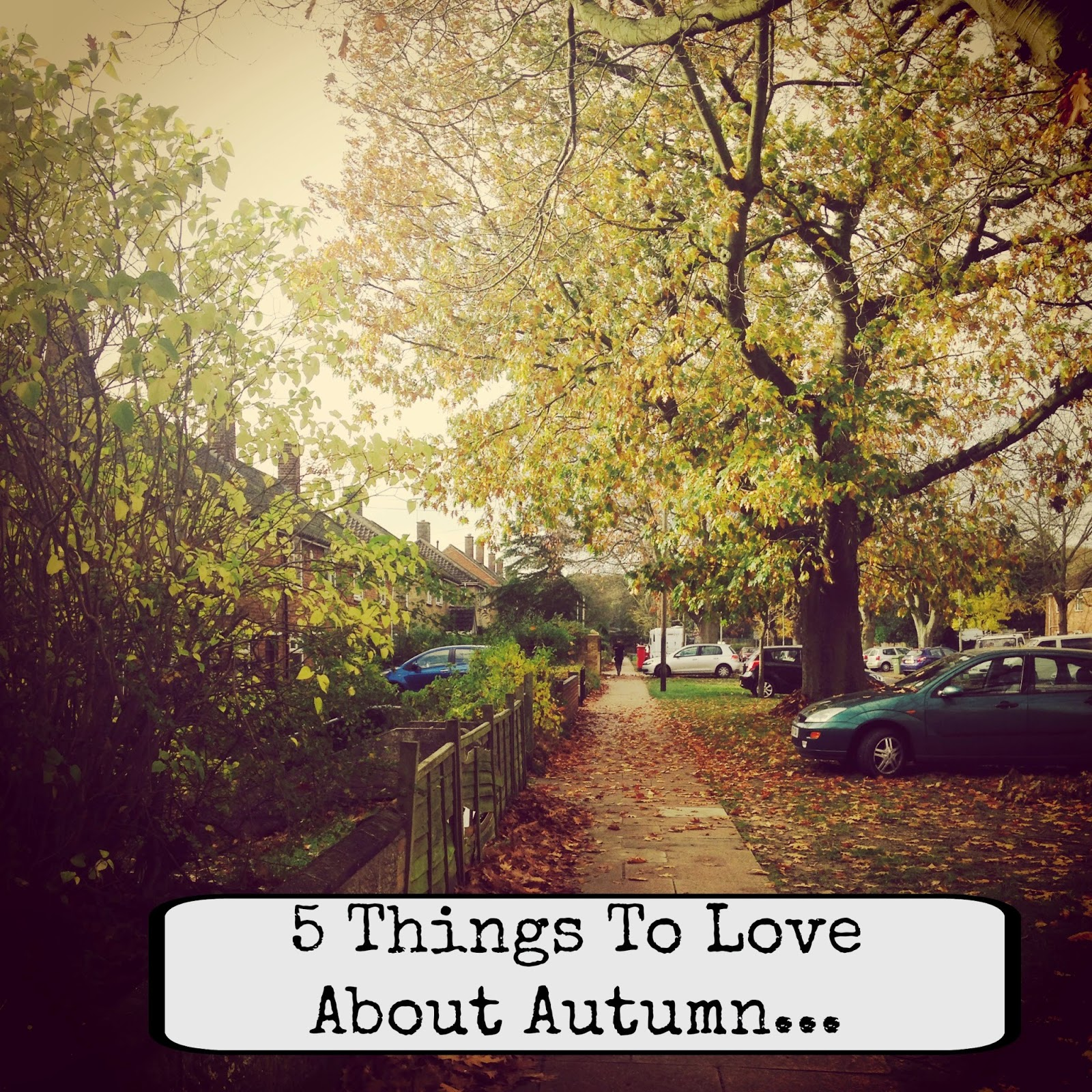 Five things to love about autumn