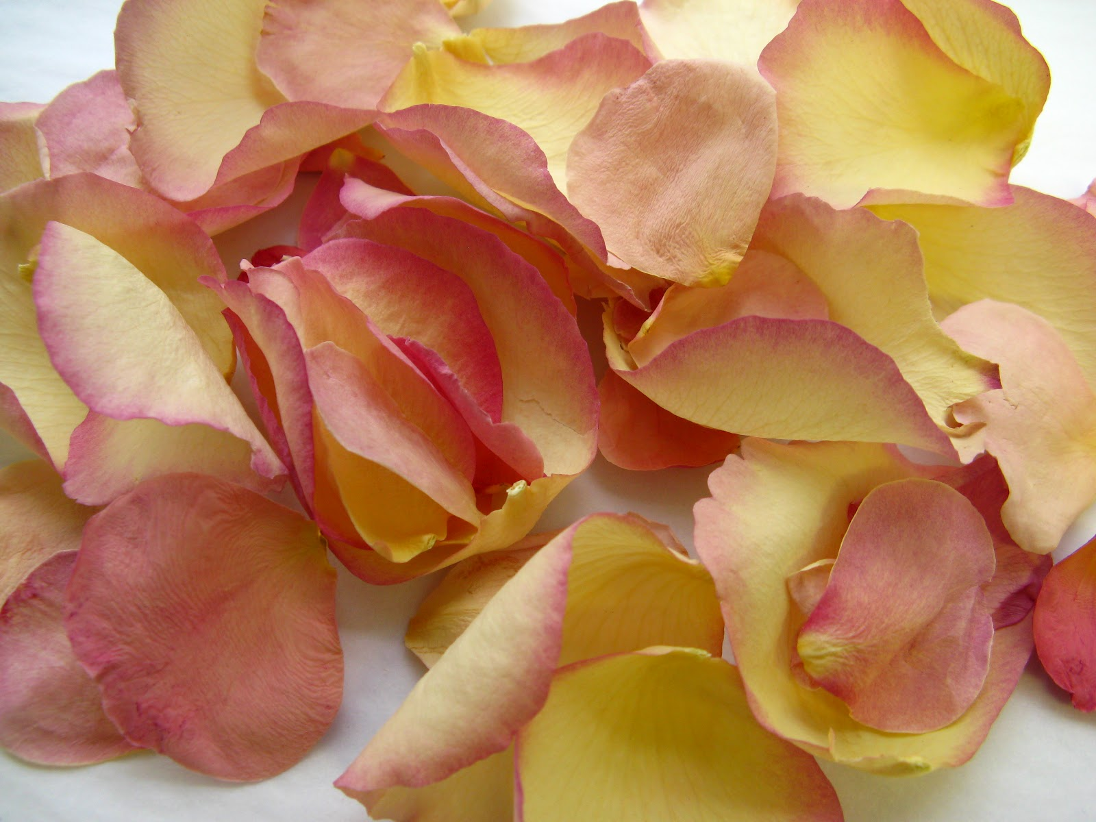 The Confetti Blog Decorating with Rose Petals Ideas and Inspiration from T