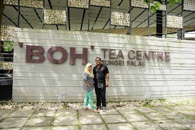 Cameron Highlands | Pahang