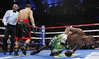 funny picture  boxer knock out