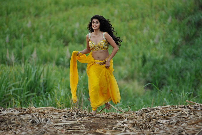 Mogudu Movie Actress Tapsee Spicy Navel Show Photos sexy stills