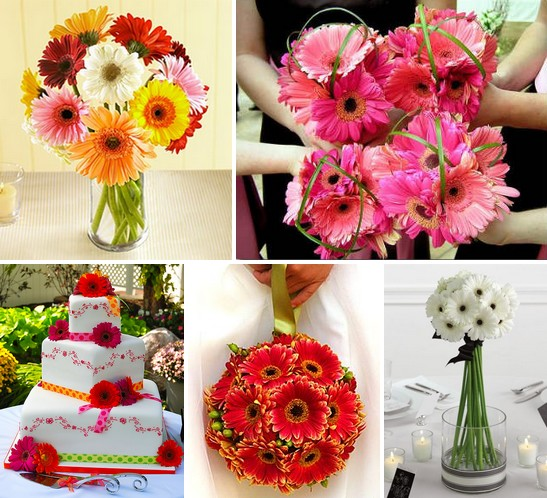 Gerbera Daisies You won 39t find a more cheerful wedding flower than the