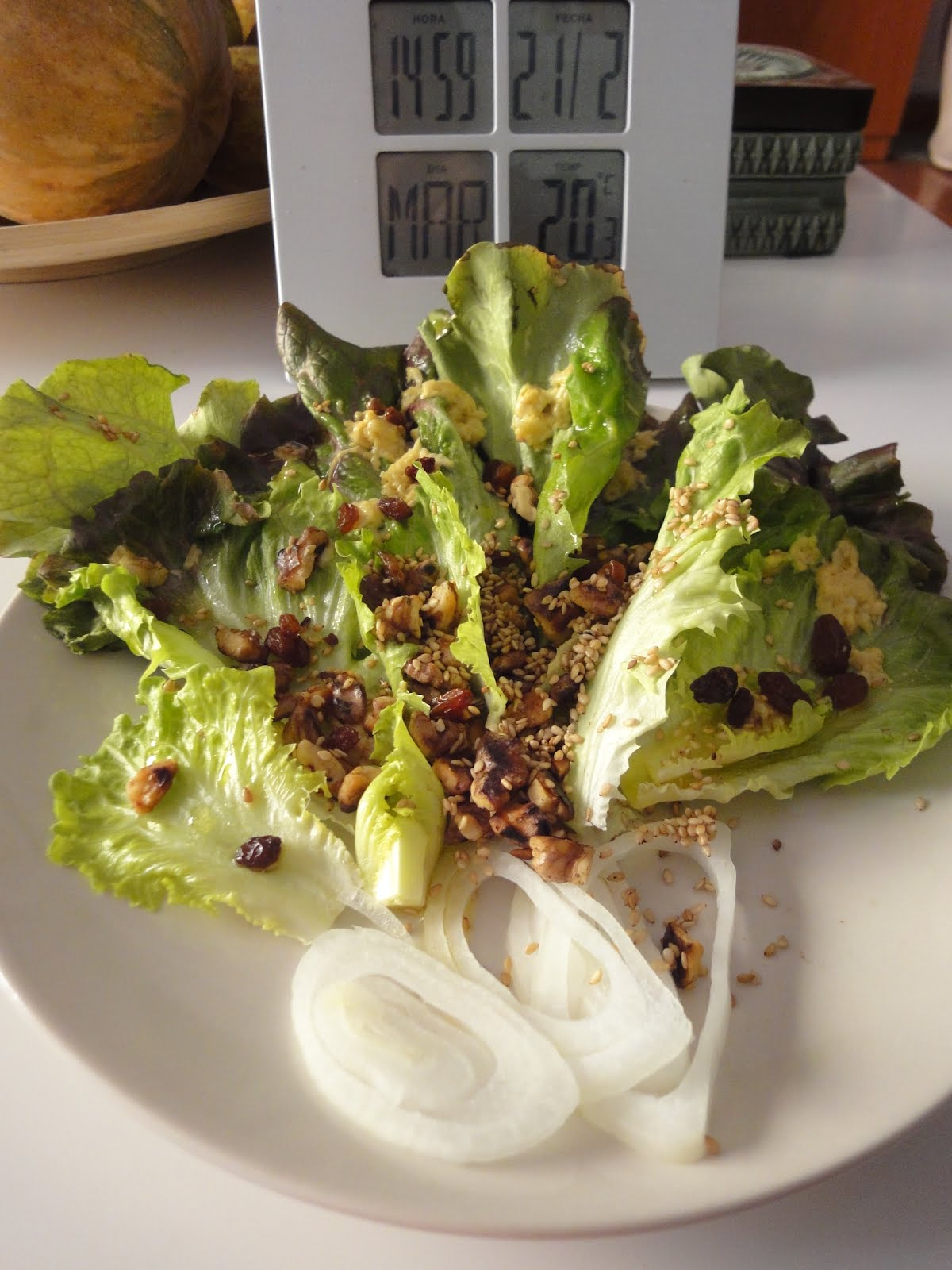 Clases de cocina zaragoza ensalada ecol gica con s samo y nueces aderezada con mostaza y ajo - Cursos de cocina zaragoza ...