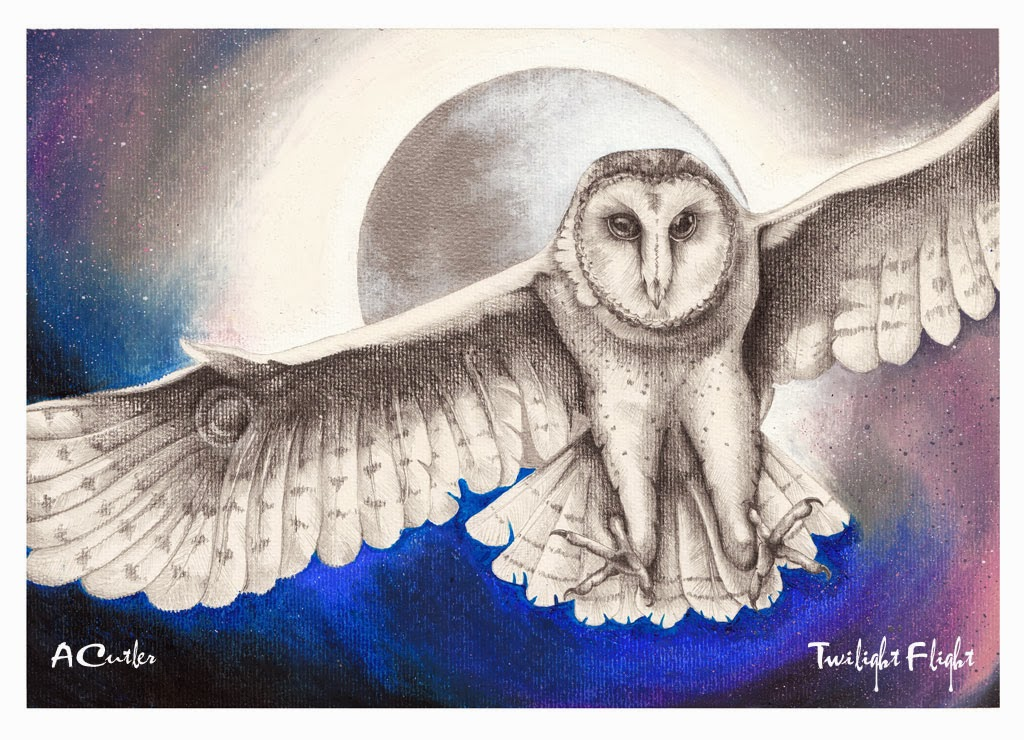 Drawing of barn owl in flight with moon