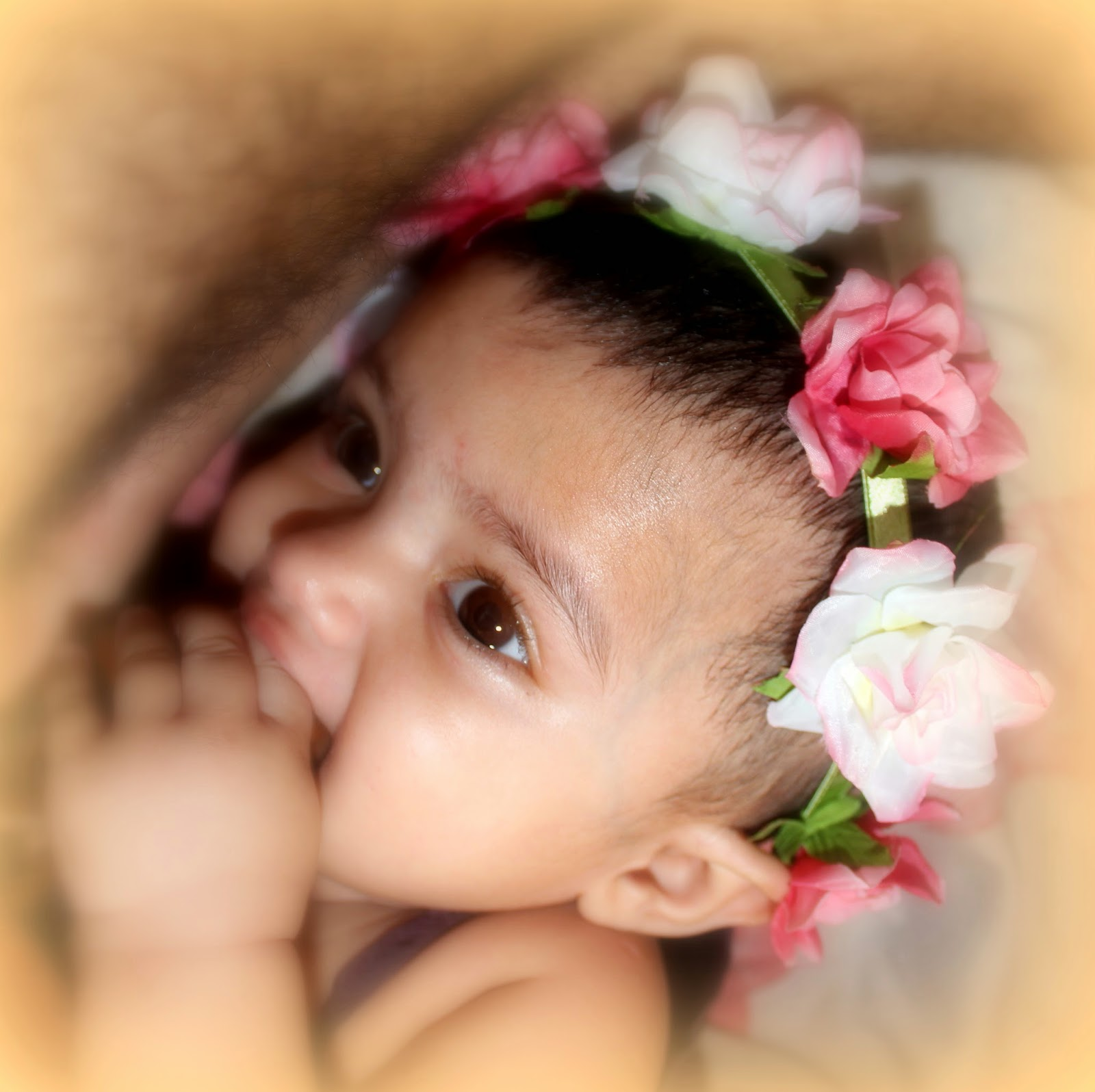 My Baby Girl's Floral Headbands! Claire's , Elitify