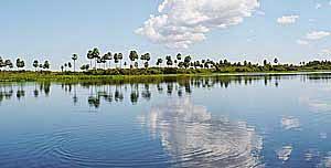 Pantanal paraguayo