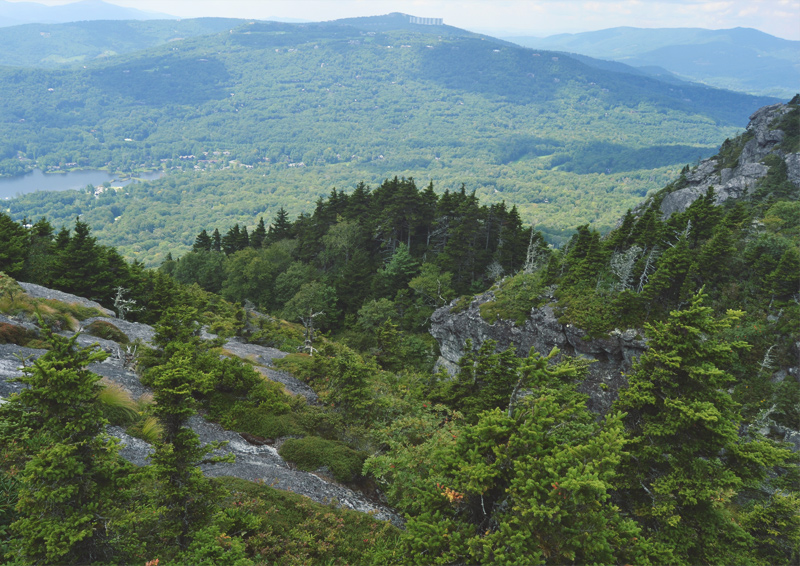 The Flying Clubhouse: Grandfather Mountain, view