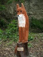 La guineu del Camí del Bosc Encantat del Torrent del Puig