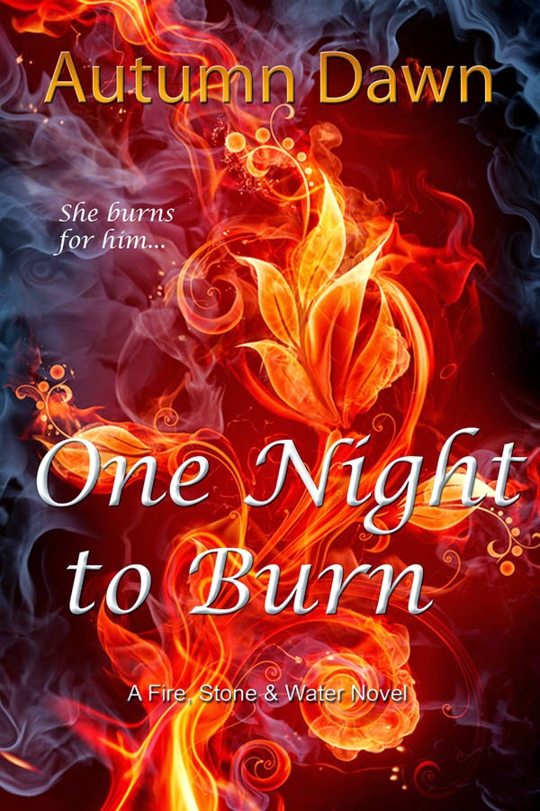 One Night to Burn