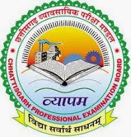 Chhattisgarh Professional Examination Board Recruitment 2013