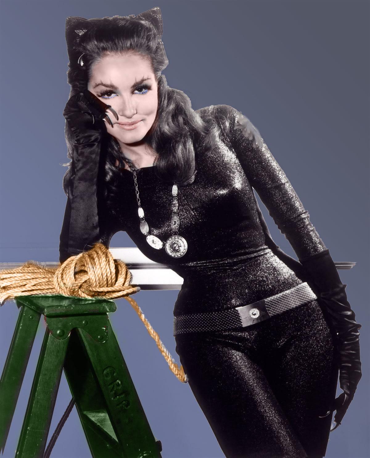 http://1.bp.blogspot.com/-YHWNIcIQNHk/UAgiawPPkqI/AAAAAAAAAKE/fEWRI844ul4/s1600/catwoman+newmar.jpg