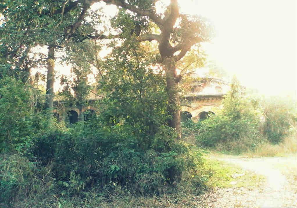 The abandoned haunted mansion in GP Block, Meerut