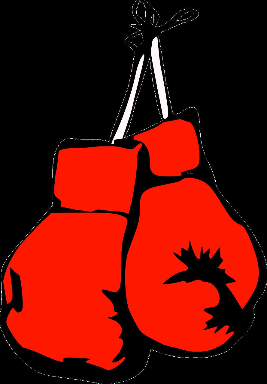sentadilla vs prensa