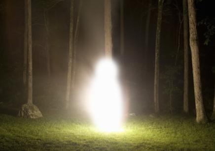 """un """" être de lumière """" photographié  en  forêt  ..."""