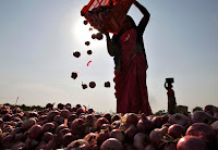 pekerja wanita bawang india