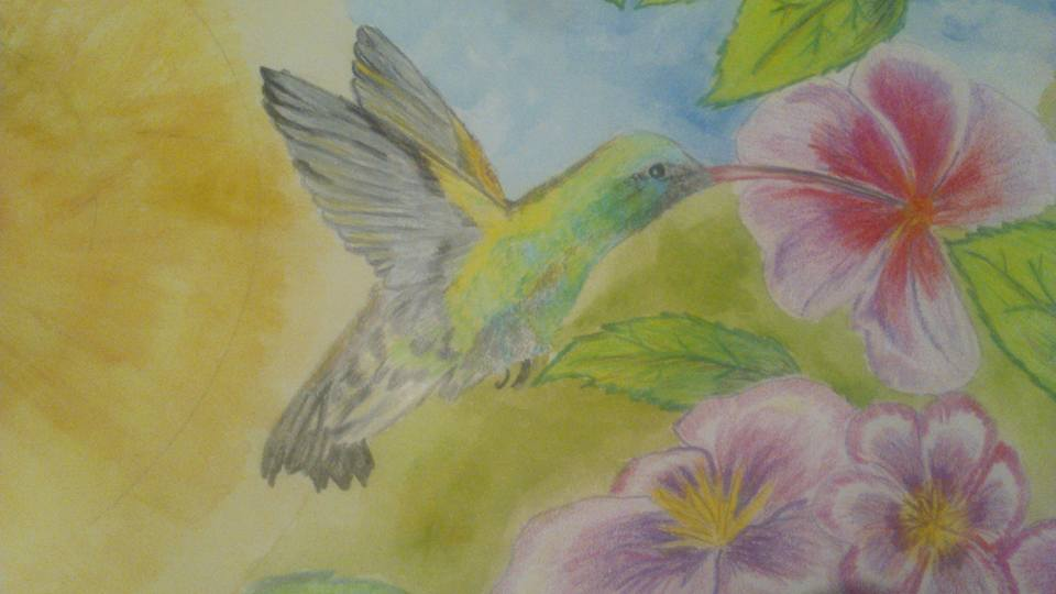 Alas de colibrí..