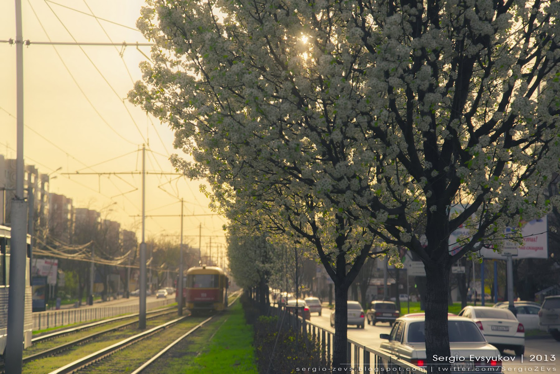 Ставропольская, Краснодар, закат, весна, Бульвар