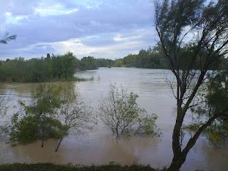 Crecida del río Gállgo 21/10/2012 riada Zaragoza Desembocadura de Gállego en el Ebro