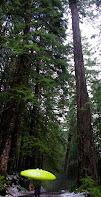 tall trees small green kayak walking in snow, WhereIsBaer.com Chris Baer Pacific Northwest