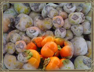 Gambar buah kesemek