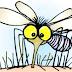 Perang Seumur Hidup Melawan Nyamuk