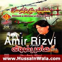http://ishqehaider.blogspot.com/2013/10/dr-amir-rizvi-nohay-2014.html