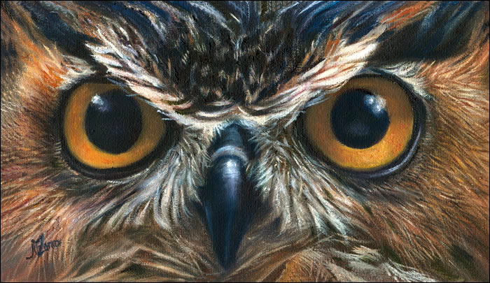 Realistic Owl Paintings On Canvas Owl eyes 923  oil on canvasOwl Eyes Paintings