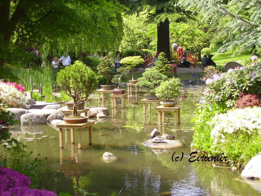 Eirienl r jardin japonais albert kahn boulogne billancourt - Mobilier jardin espagne boulogne billancourt ...