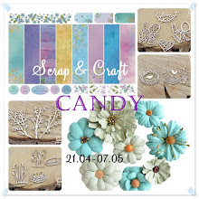 Blog Candy 5/07