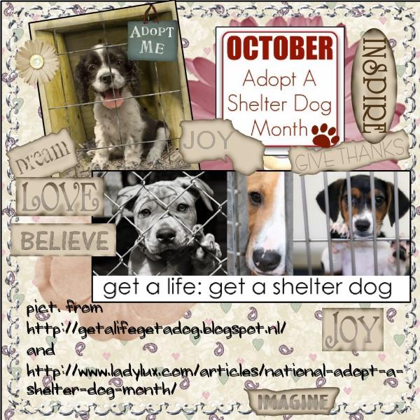 Oct.2016 - Adopt a Shelter Dog Month