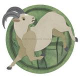 Horoscop Chinezesc Capra Oaie  Anul Sarpelui 2013-2014