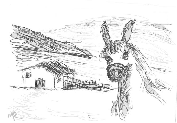 Gargots et Drawings