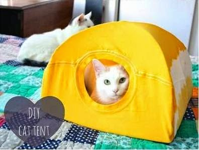 Making tents for cats