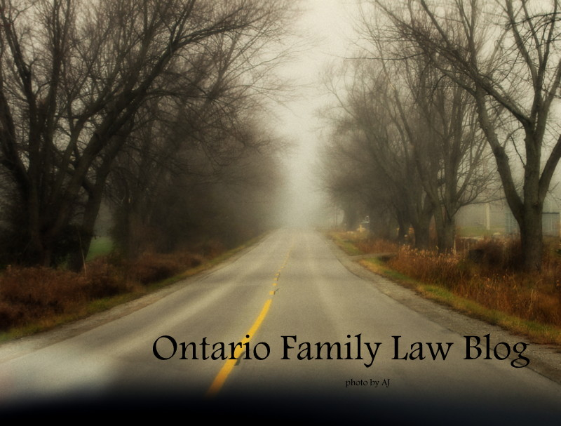 ONTARIO FAMILY LAW BLOG