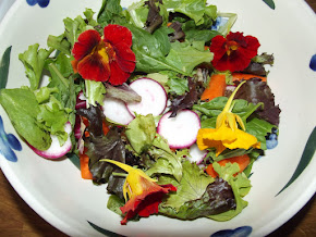Salad with fresh nasturtium from the garden.
