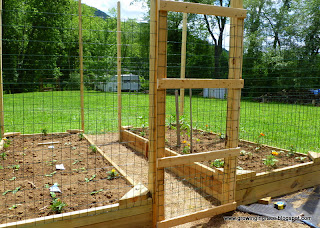 Raised Garden Beds Keeping Out Critters From Below
