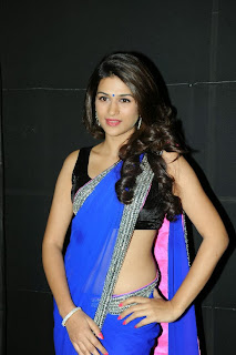 Actress Shraddha Das  Pictures in Saree at Rey A to Z Look Launch 0034