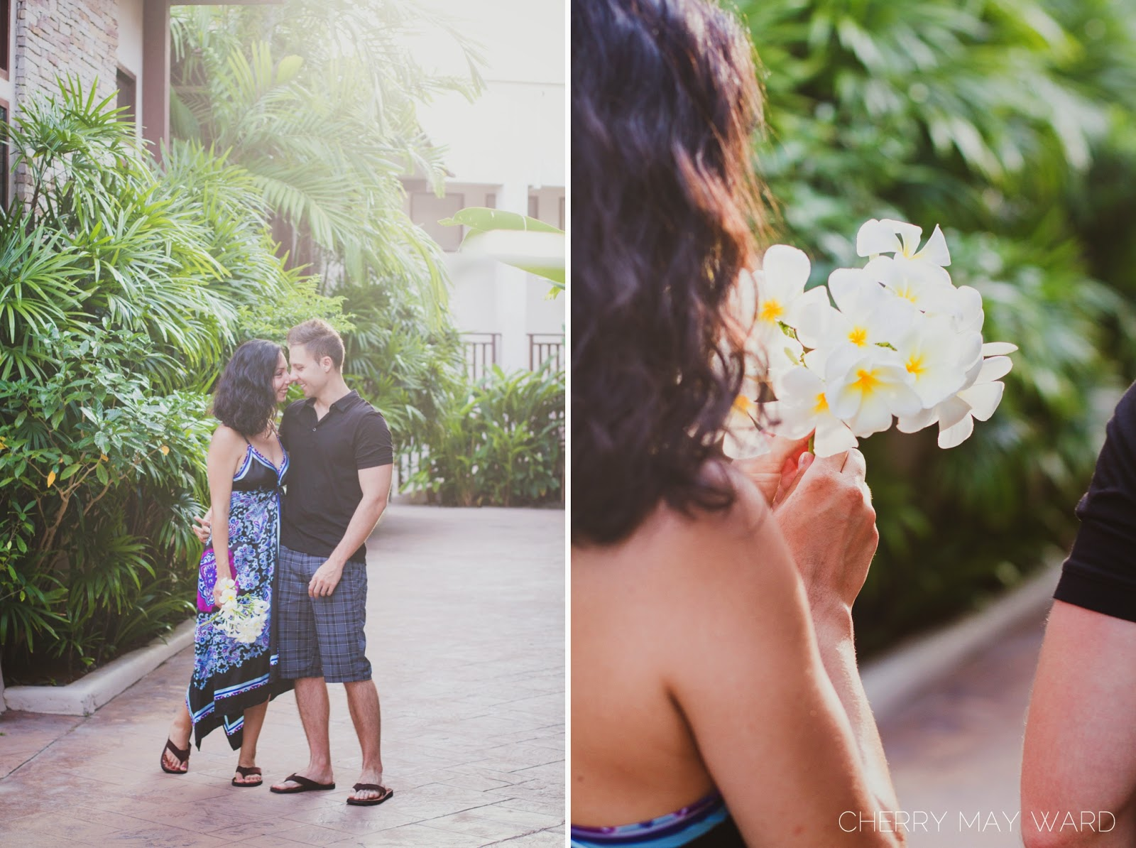 Koh Samui frangipani, smelling the frangipani on Koh Samui, beautiful frangipani, Young couple in love on Honeymoon