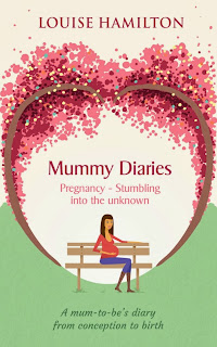 mummy diaries pregnancy stumbling into the unknown Louise Hamilton