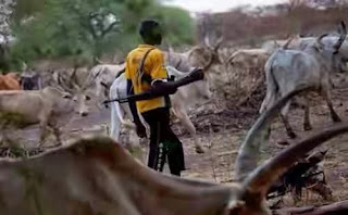 15 Killed In Attacks On Fulani Communities In Taraba