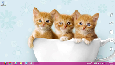 Cute Cats Windows 7 Theme