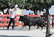 Fotos Vila Viçosa 2018